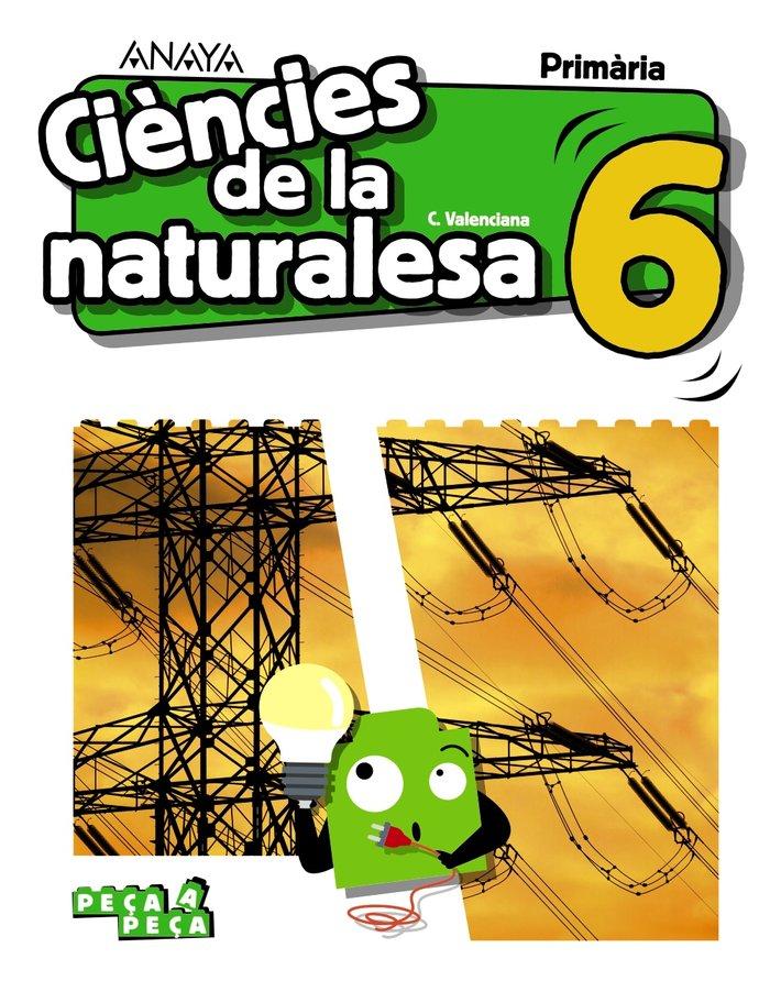 Ciencies naturalesa 6ºep valencia 20 peÇa a peÇa