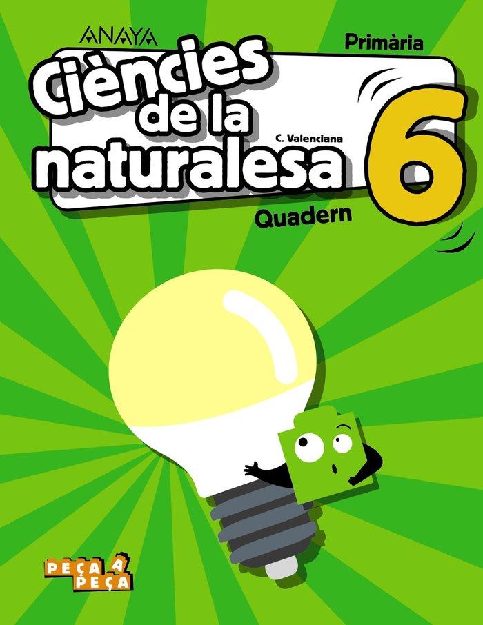 Quadern c.natural.6ºep valencia 20 peÇa a peÇa