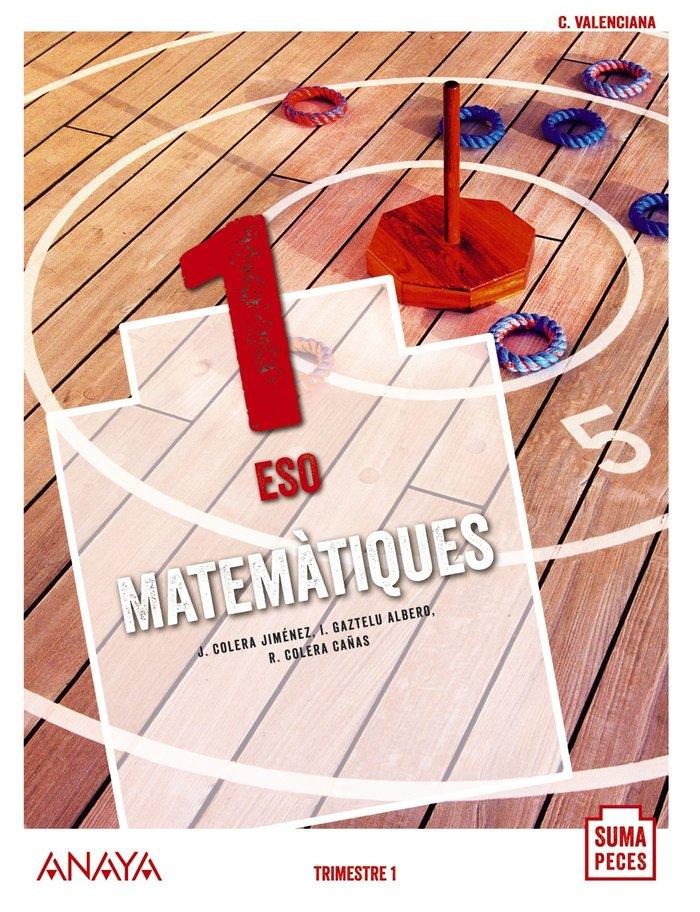 Matematiques 1ºeso valencia 20 suma peces
