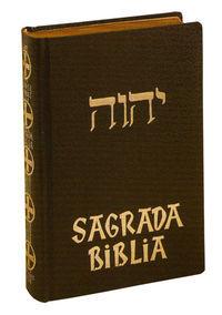 Sagrada biblia ii