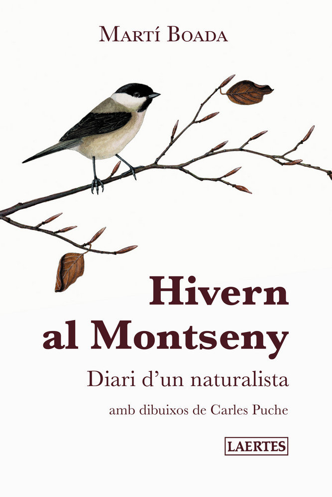 Hivern al montseny