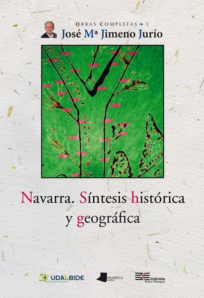 Navarra. sintesis historica y geografica
