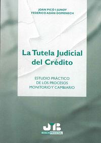 Tutela judicial del credito.,la