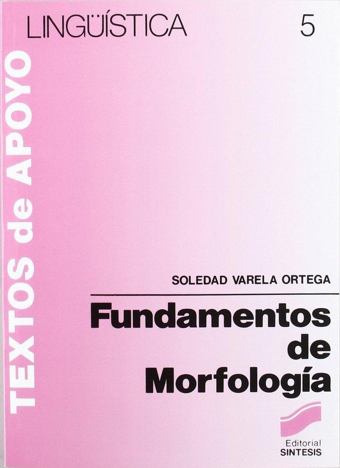 Fundamentos morfologia