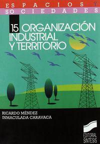 Organizacion industrial y territorio