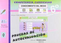 Competencia curricular conoc.medio 6+cd ad pack nº132/133