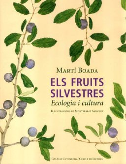 Fruits silvestres