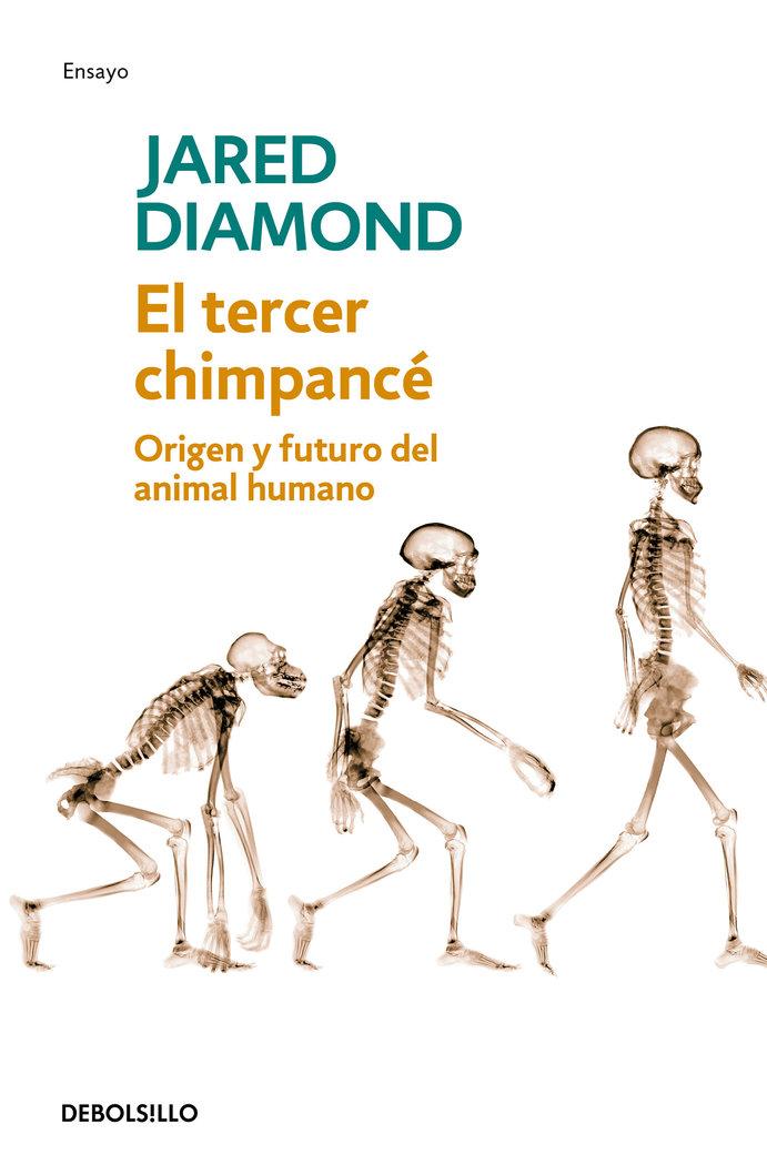 Tercer chimpance dbd