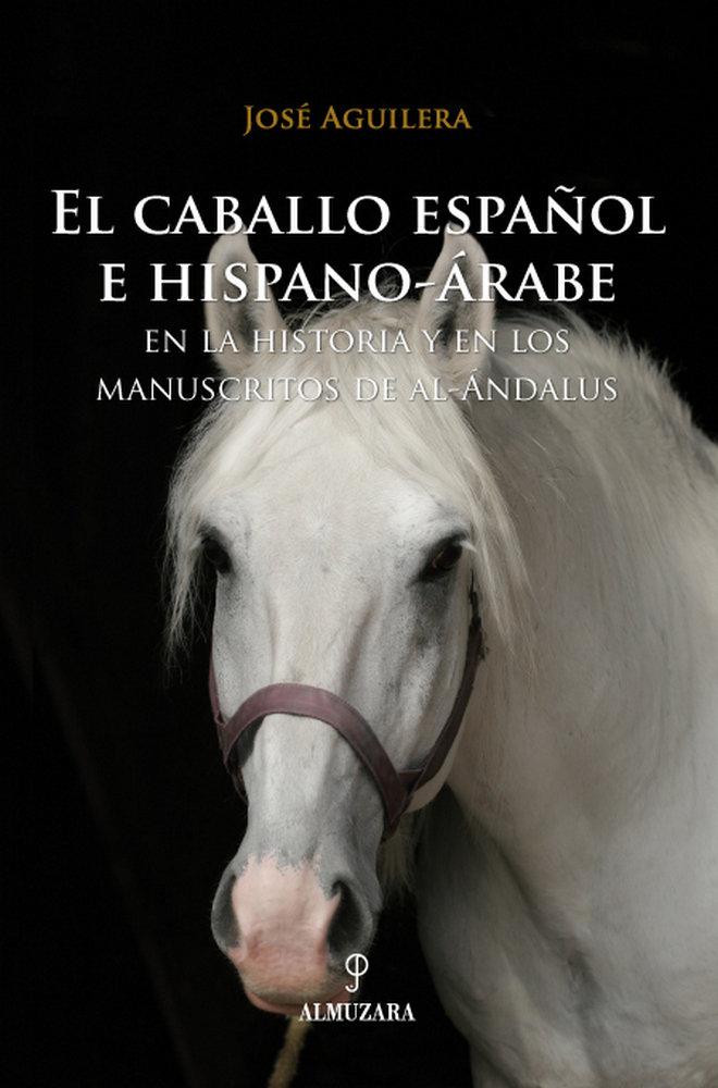 Caballo español e hispano-arabe en la historia, el