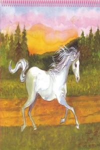 Princess top horses coloring book caballo y niña