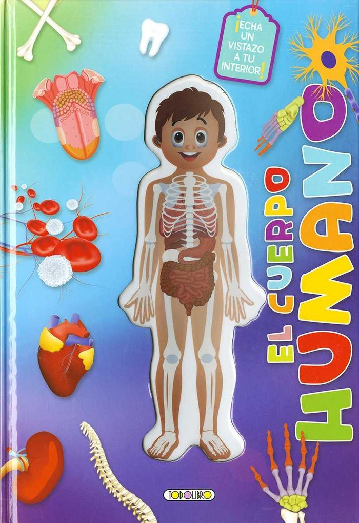 Cuerpo humano por dentro,el
