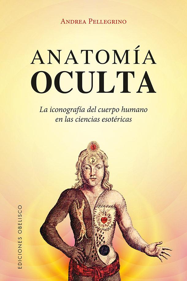 Anatomia oculta