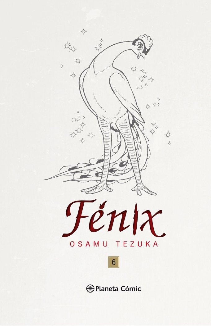 Fenix 6 nueva edicion