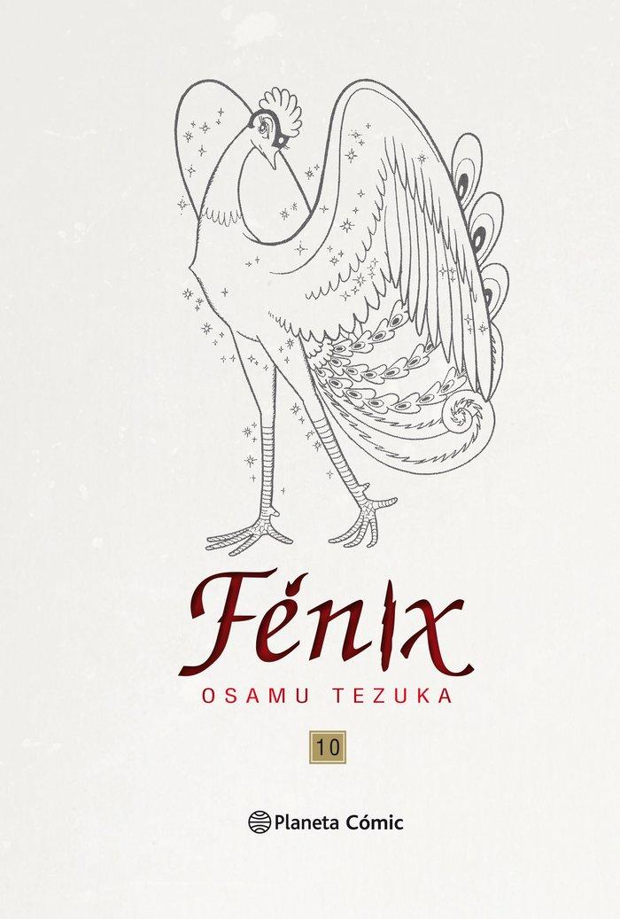 Fenix 10 nueva edicion