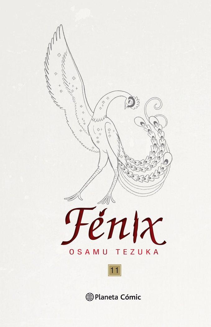 Fenix 11 nueva edicion