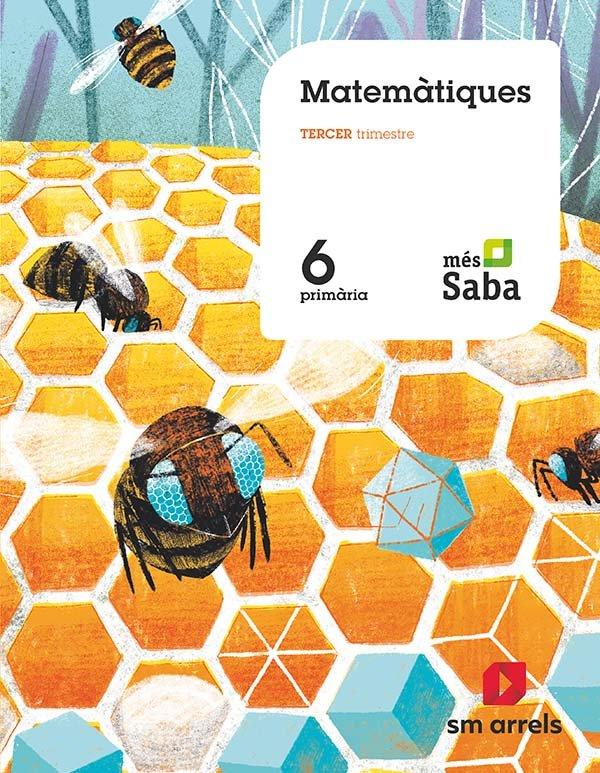 Matematiques 6ºep valencia 19 mas savia