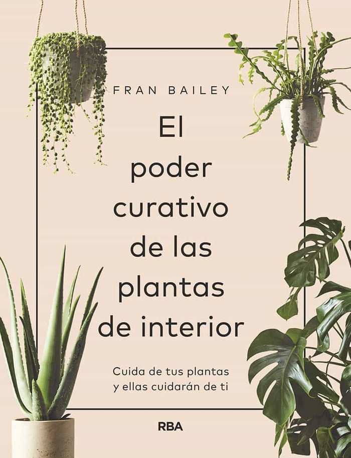 Poder curativo de las plantas de interior,el