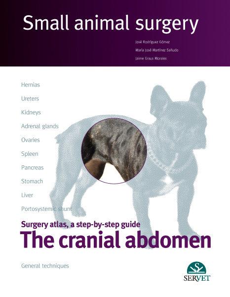The cranial abdomen. small animal surgery