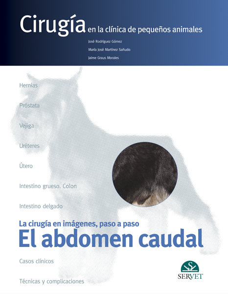 Abdomen caudal cirugia pequeños animales