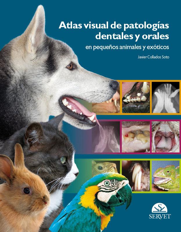 Atlas visual de patologias dentales y orales