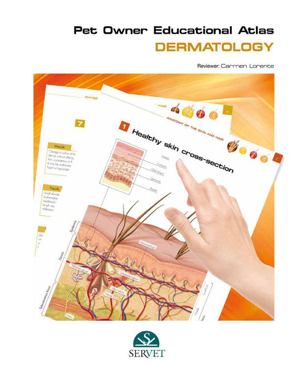 Dermatology. pet owner educational atlas