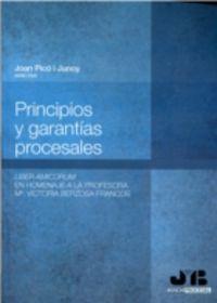 Principios y garantias procesales.