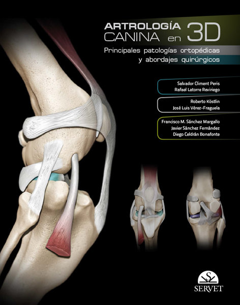 Artrologia canina en 3d principales patologias ortopedicas