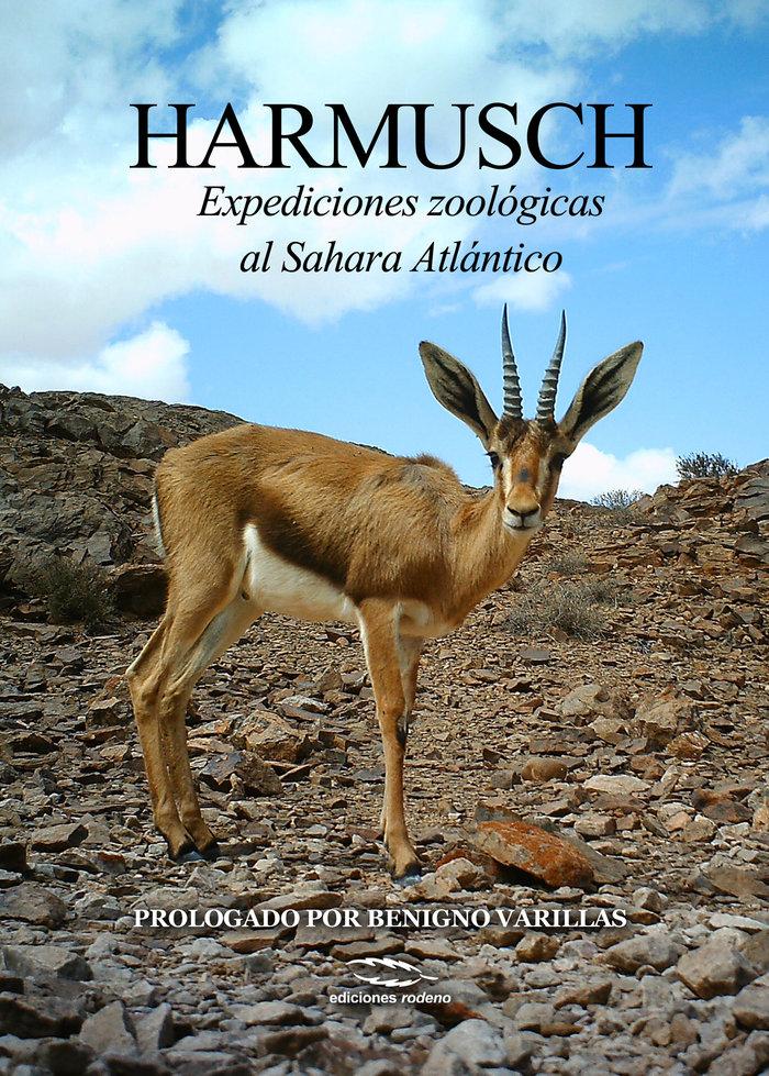 Harmusch expediciones zoologicas al sahara atlantico