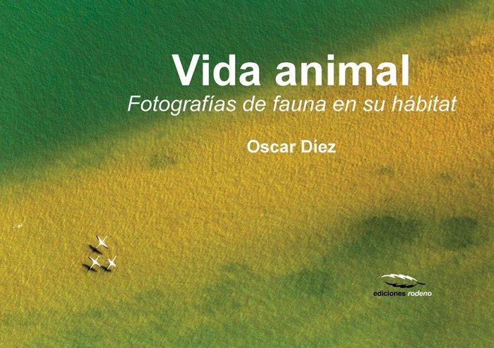 Vida animal fotografias de fauna en su habitat