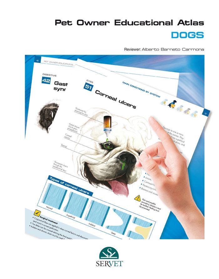 Dogs. pet owner educational atlas
