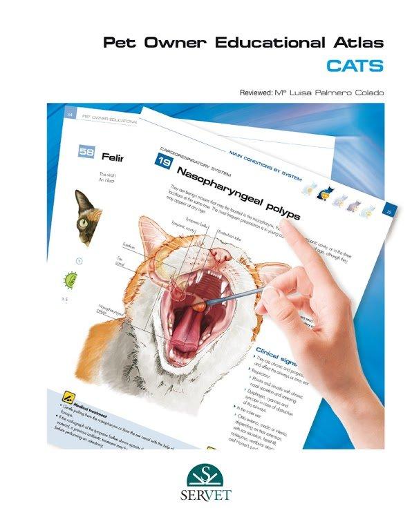 Cats. pet owner educational atlas