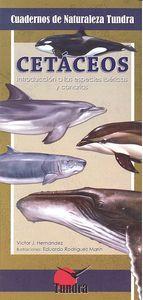 Cuadernos naturaleza 11 cetaceos