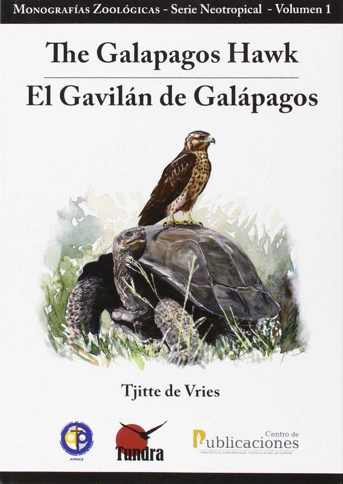 The galapagos hawk / el gavilan de galapagos
