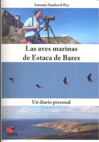 Aves marinas de estaca de bares