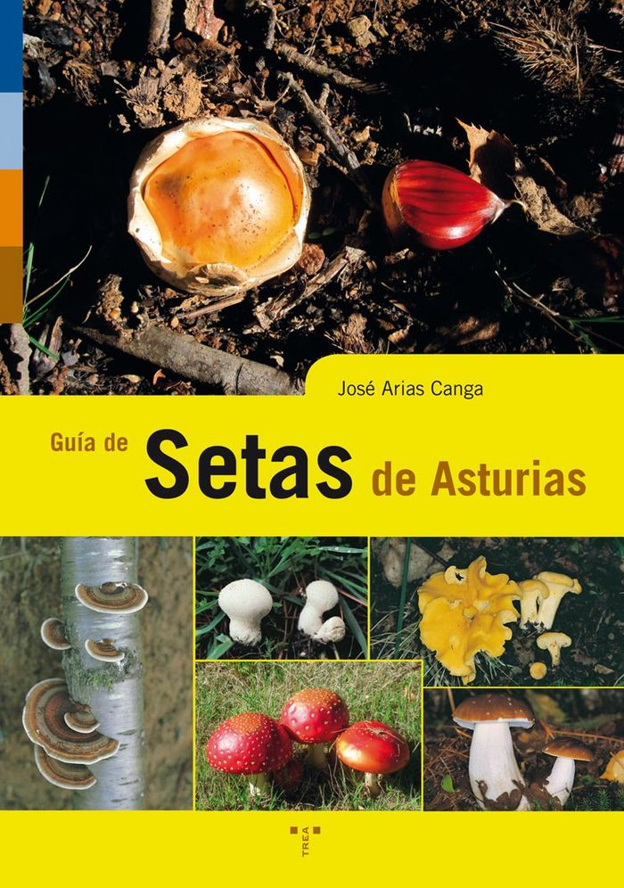 Guia de setas de asturias