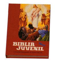Mini biblia juvenil