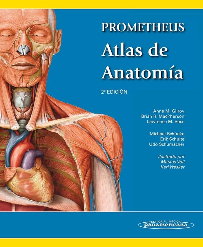 Prometheus. atlas de anatomia 2 ed