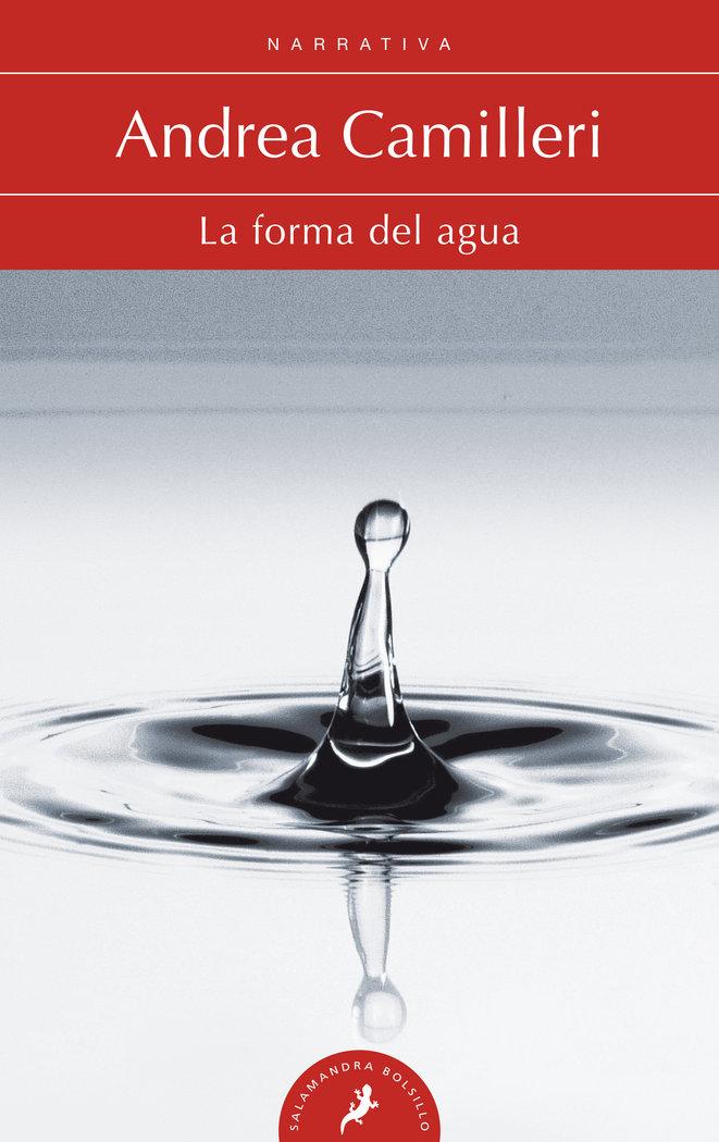 Forma del agua,la