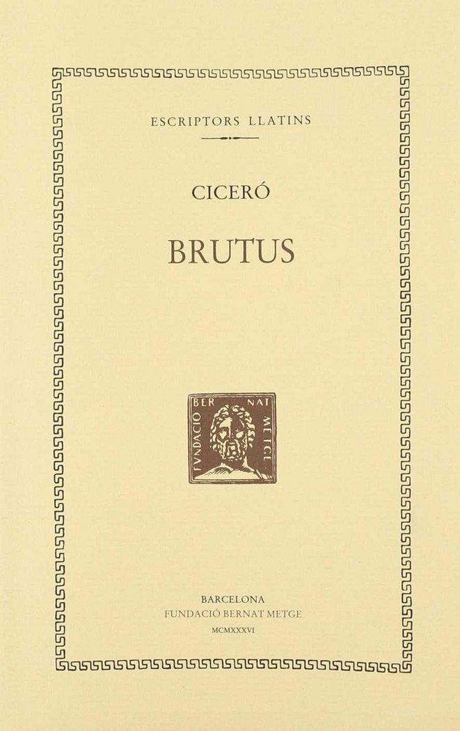 Brutus - cat
