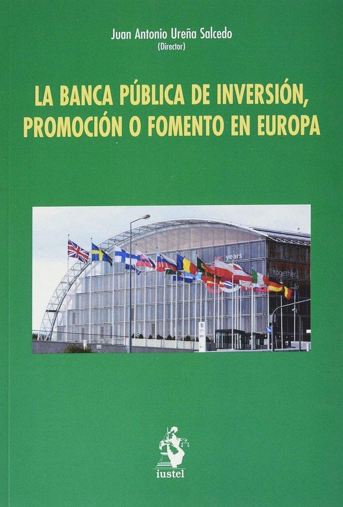 La banca publica de inversion promocion o fomento en europa