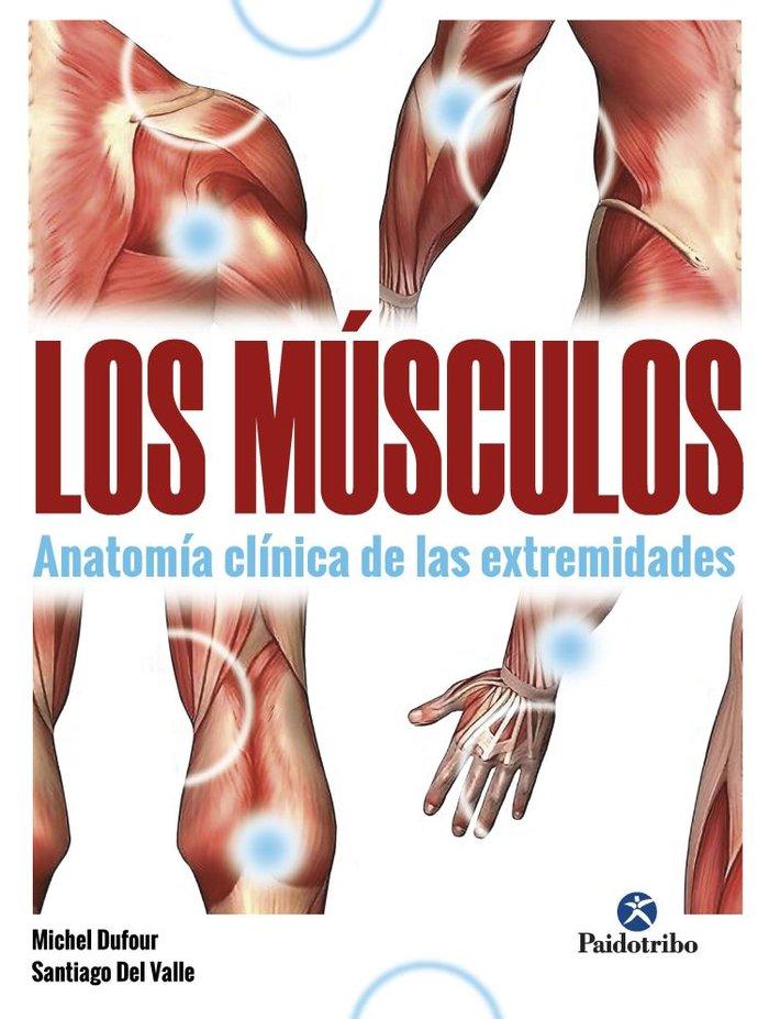 Musculos,los anatomia clinica de las extremidades