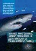 Tiburones rayas quimeras lampreas y mixinidos de la cost