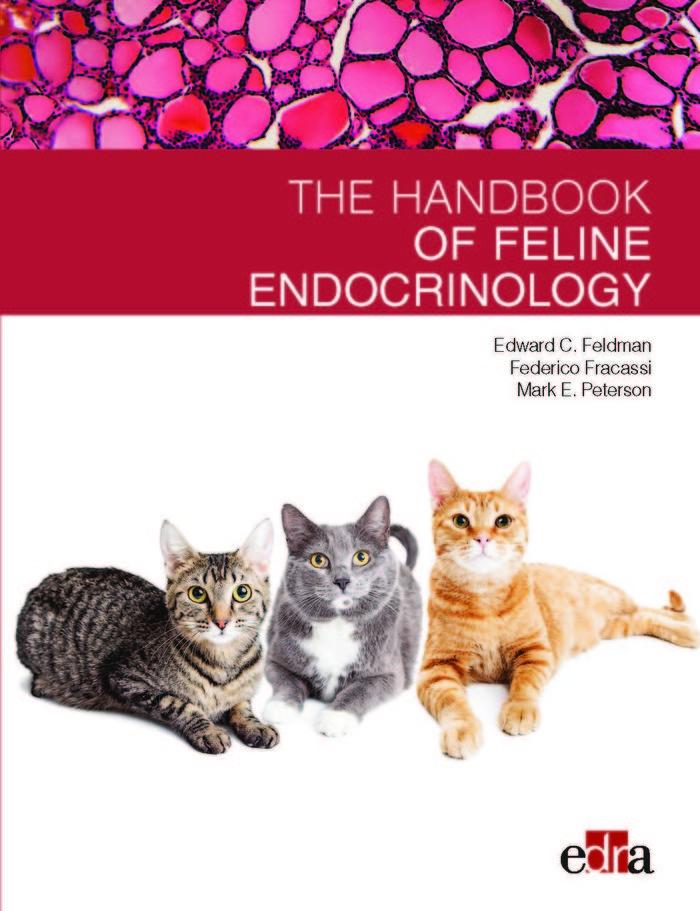 Feline endocrinology