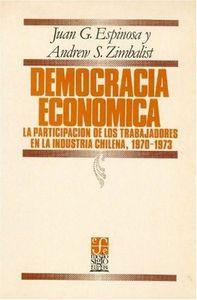 Espinos-democracia economica