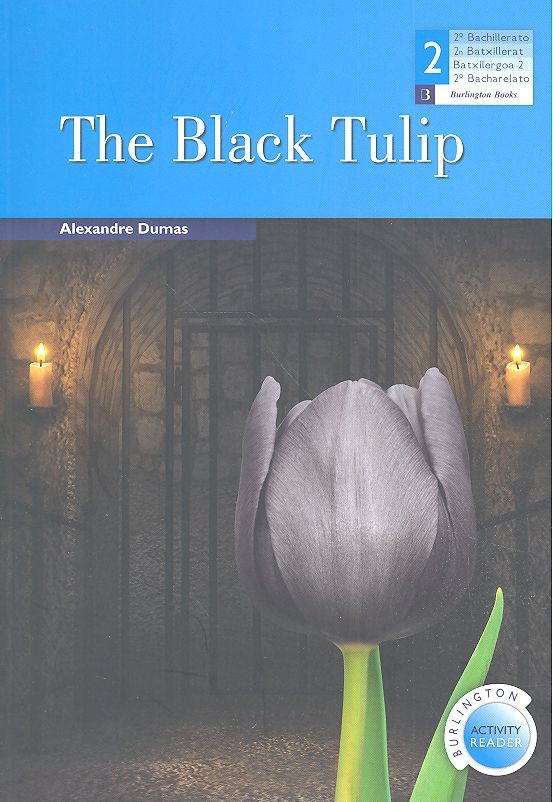 The black tulip 2ºnb bar