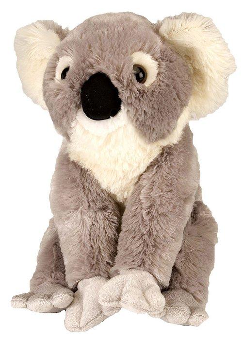 Peluche ck koala 12