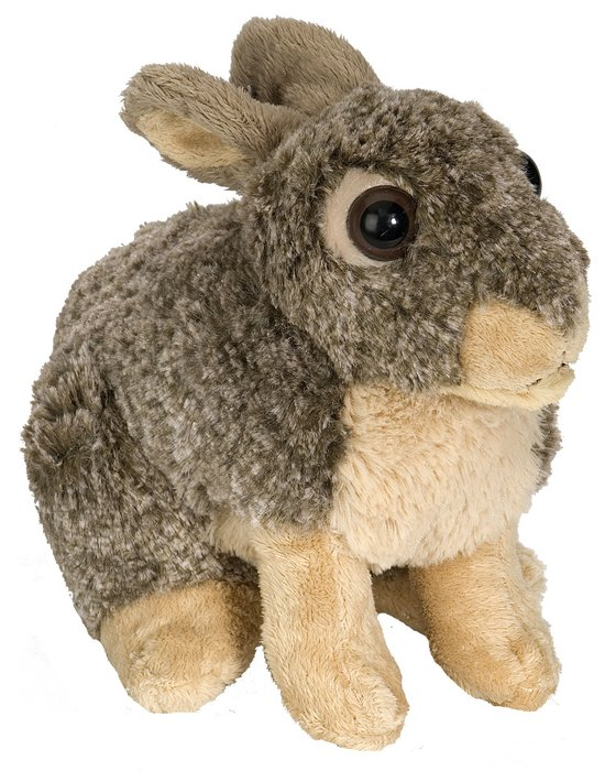 Peluche ck conejo 12