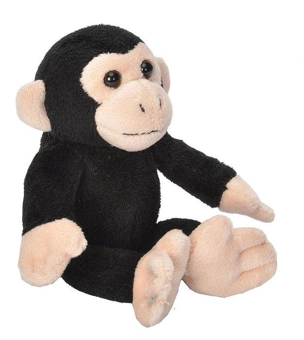 Peluche ck lil´s chimpance
