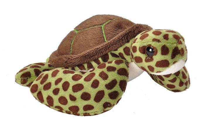 Peluche ck lil´s tortuga verde