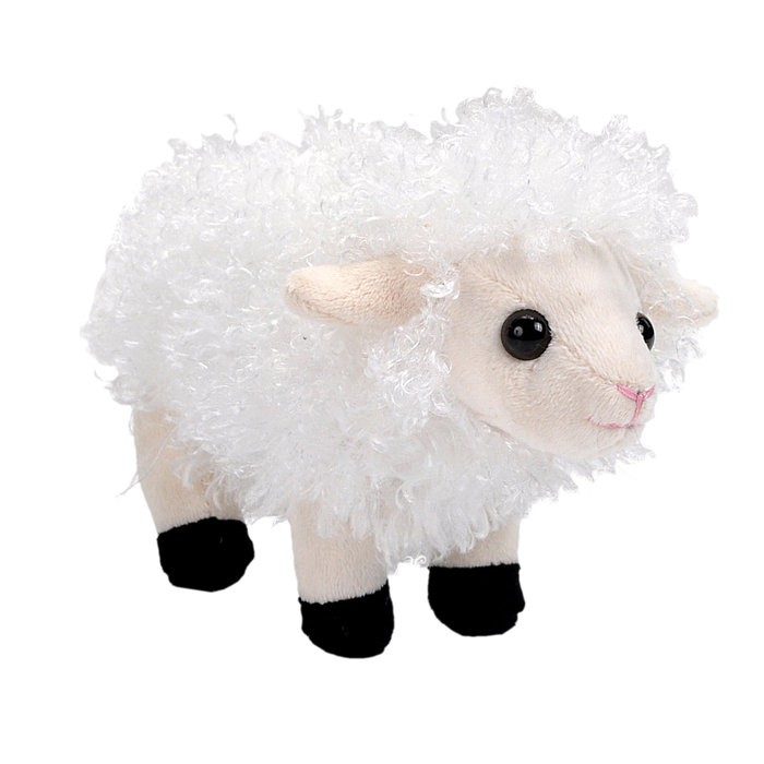 Peluche oveja pock